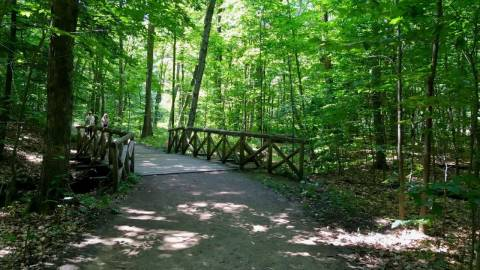 Hiking - Waterfall and Lauriault Trails - Gatineau Park - August 5, 2018